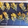 ドライフラワー ミモザ アレンジ リース ハーバリム キャンドル 花材 黄色