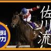 南関競馬枠複指南4月2日~6日結果
