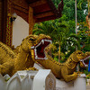 チェンマイの代表的な寺院を1日で回りきってみた! その13