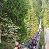 カナダ&アメリカ旅「アムトラックで国境越えの旅!自然がすぐそばに感じられる!大都市バンクーバー」