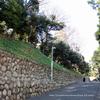 旧岩崎邸庭園 2