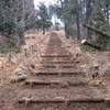 勝俣部長の「高尾登山と健康体質作り」・・・・下手でもいいから 考えろ精神