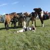 モンゴル旅行3日目 熱量高く朝日撮影と乗馬体験