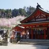 犬山市の尾張本宮山に行ってきました