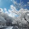 雪の中のドライブ  前編