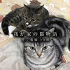 【保護猫/アメリカンショートヘア/多頭飼い】我が家の猫物語:鬼嫁.com編 Complete ~私、猫恐怖症だったんです~