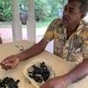 スリランカの宝石