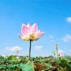 人生のチャレンジを生きる時~瞑想セミナー3