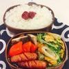 水菜と卵の炒め物とドデカしいたけ弁当
