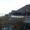 【 埼玉から京都。そして現在は神戸。】