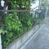 """DIY"" 外構フェンス工事の値段 鉄のフェンスがボロボロ交換したい"