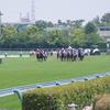 札幌芝1200m(2歳戦)種牡馬別ランキング