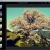 無料アプリ「Photoshop Express」のフィルター機能を試す。納戸料の百年桜で。