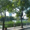 中国痺証専門講座「南通研修」 南通市に到着 ホテルまで