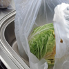 我が家の新しいルール「野菜の常温保存、絶対に絶対に禁止!」