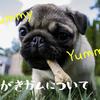 犬の歯磨きガム