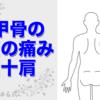 『痛みの整体辞典vol.4』 肩甲骨の外側の痛み(ローテーターカフ。しつこい肩こり、四十肩に)