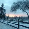 いざ冬が終わりそうになるとまた寂しくなる