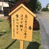 樹木希林さん 相変わらず強い 〜2019.5.28週間ランキング