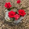 摘んだバラの花を見ていて… 百万本のバラに想いが飛びました…