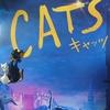 舞台と映像版のオタクが映画CATSを観てきた
