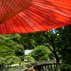 京都人の夜景色・村山槐多:京言葉ってやわらかいのにインパクトが強い