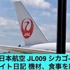 JAL 日本航空 JL009 シカゴ-成田 フライト日記 機材、食事を紹介