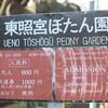 上野のぼたん園と東京夕日