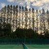 テニスの団体戦・試合結果