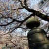 一の坂2012春①
