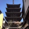 八坂神社から、清水寺へ途中で出合ったBuddyの靴 旅は楽しい