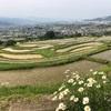 全国初の国の名勝に選ばれた場所!日本の棚田100選 千曲市「姨捨の棚田」