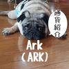 Ark (ARK)アーク