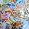 【いくら外貨を持っていく?】海外旅行のピースボート、日本円を持って行くべき理由とは!