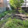 【不動産投資】裏庭で家庭菜園~⑥