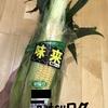 【簡単!】トウモロコシはレンジがおすすめ!!皮ごとorラップでチンの方法を紹介します!