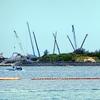 宮古島も揺れる辺野古埋め立て問題 サンゴの問題にも注目を