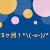 【ブログ3ヶ月目運営報告】平凡なぼちぼち更新の結果とアドセンス