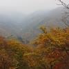 【登山】中禅寺湖から鹿沼古峯神社まで【紅葉霧中】