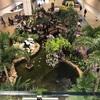【シンガポールチャンギ空港でトランジット】シャワー、仮眠スペースはどこにある?シンガポールトランジットプログラム利用でシャワーが無料利用できる!その他の施設やwi-fiの感想など