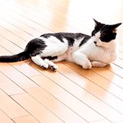 床暖房にかかる費用は? 電気代はどう変わる?