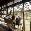 凛とした空気の漂う茂原の古民家カフェ「コーヒーくろねこ舎」と、白子温泉の河津桜