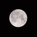 自宅ベランダで「ブルームーン」を手持ち撮影してみた。望遠ズームレンズM.ZUIKO DIGITAL ED 40-150mm F2.8 PRO+MC-14