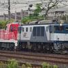 第984列車 「 甲113 JR貨物DD200-2の甲種輸送を狙う 」