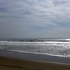 今日の千葉北波情報(20/03/13)とストックボードキャンペーン中のお知らせ