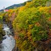 秋の滝上町錦仙峡の紅葉