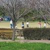 戸田川緑地 2020.3.17