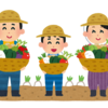 秋田県は農業が盛んだと言うけど、なんで秋田大学に農学部がないの?