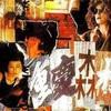 夢中人 もしくは Dreams (1994.王菲)