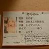 保護犬カフェ堺店 2020.11.19